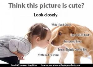 kind en hond (2)
