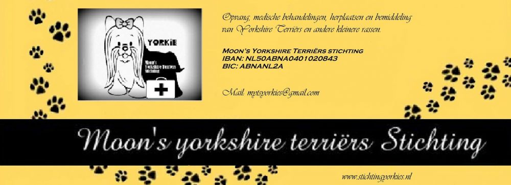 Moon's Yorkshire Terriërs Stichting